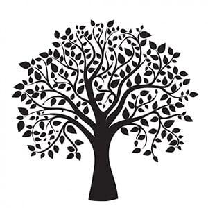 tree-018752