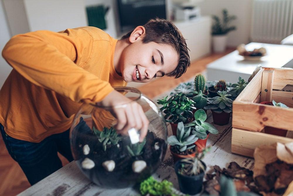 A boy tending plants in a terrarium