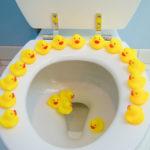 Toys in toilet